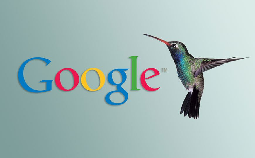 How to Make Google Hummingbird Love You | A Small Business Guide