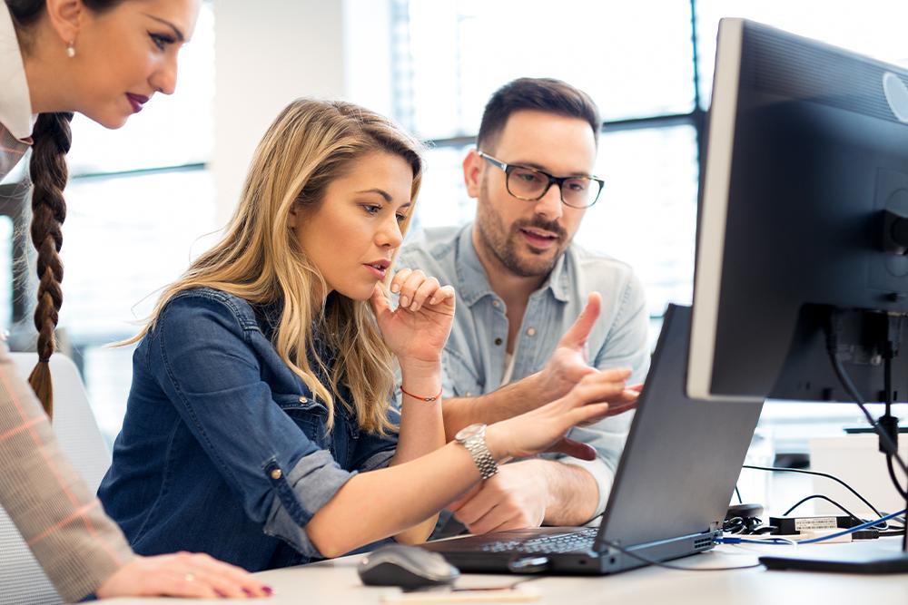 A WordPress web developer working with a team