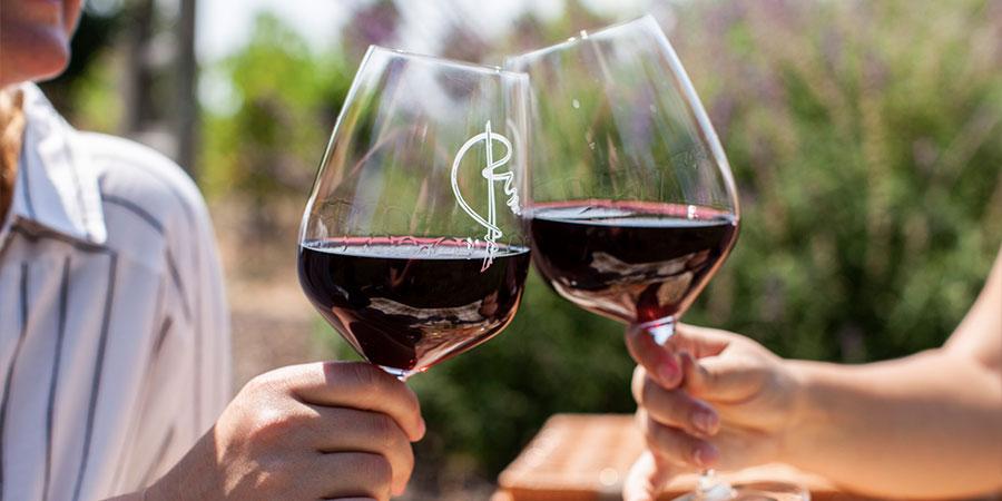 marketing case study, rincon winery